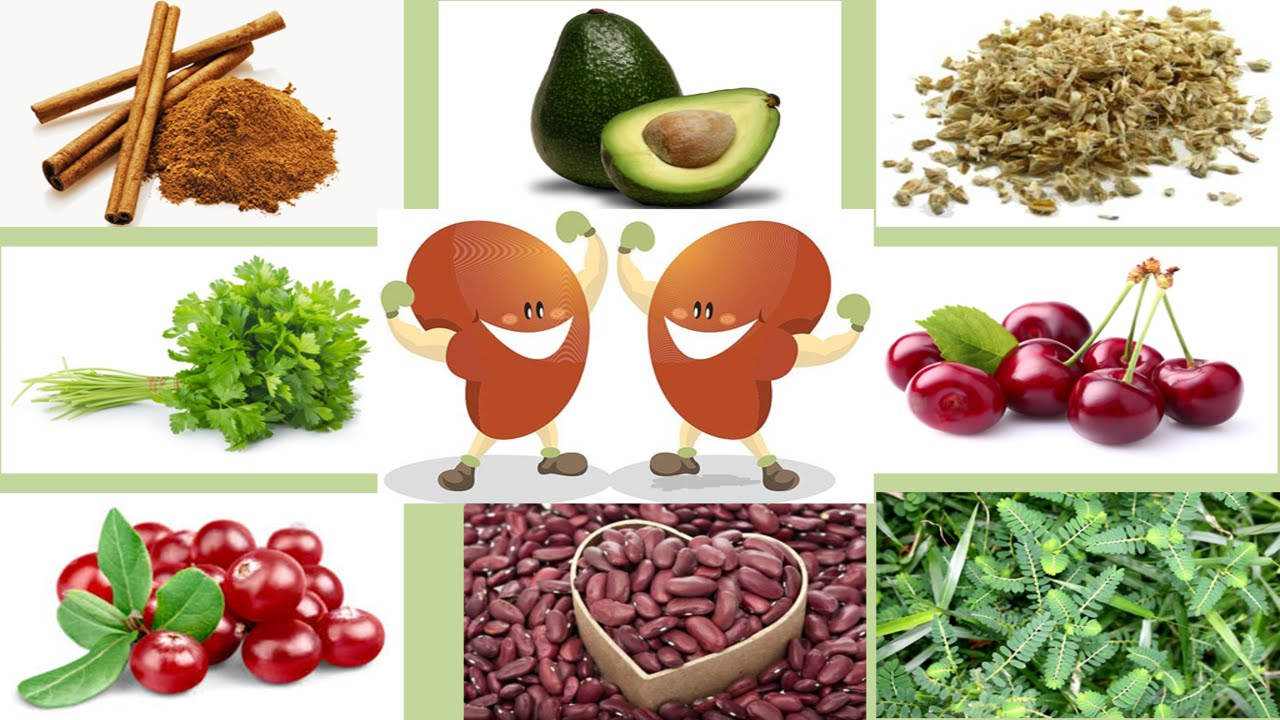 Healthy Diet for Healthy Kidney